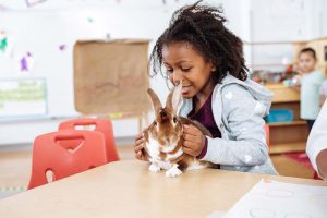 young girl with a bunny rabbit in the classroom