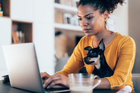 Young African-American woman sitting with her pet dog and using laptop at home